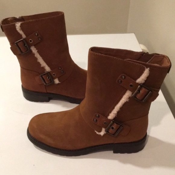 b45506048e2 😍New Ugg Neils Chrstnut Leather Moto boots Sz 8 NWT